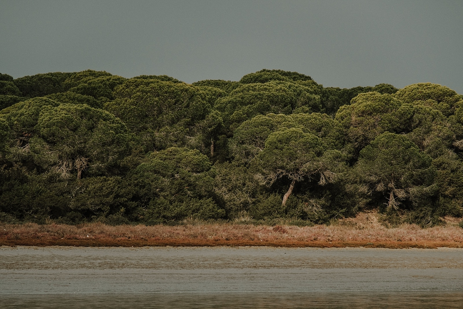 Doñana Natural Park, Destination wedding