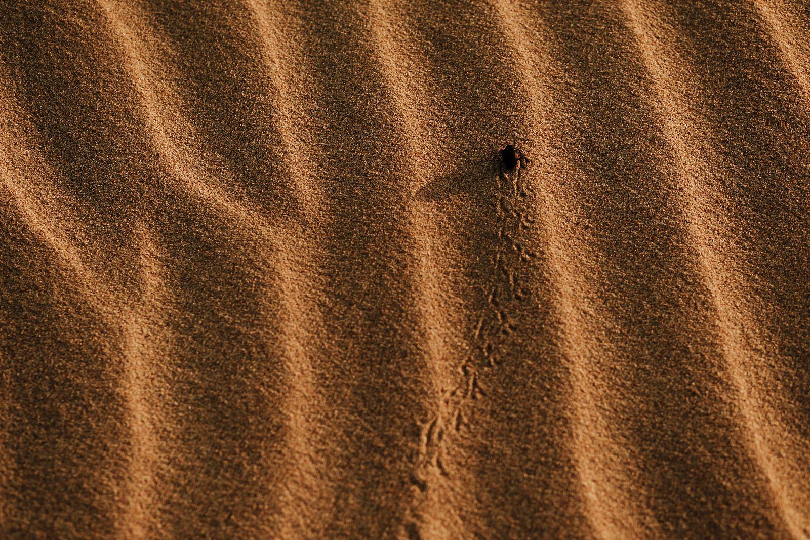 Fotografo en Tarifa, Andalucia, Spain